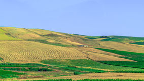 Sicily Summer Landscape Royalty Free Stock Photo