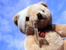 Sick bear Stock Photos