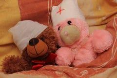 Sick bear Stock Image