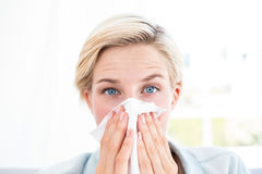 Sick blonde woman blowing her nose. In the living room Royalty Free Stock Photography
