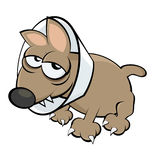 Sick cartoon dog Royalty Free Stock Images