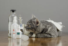 Sick cat on a table with medicines Royalty Free Stock Photos