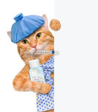 Sick cat. For white banner Royalty Free Stock Photography