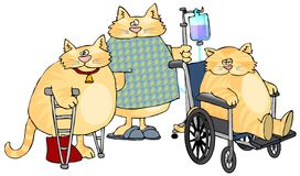 Sick Cats. This illustration depicts three sick cats, one in a wheelchair, one on crutches and the other in a hospital gown pushing an IV cart vector illustration