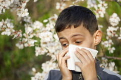 Allergy. Sick child who has allergies Stock Photography