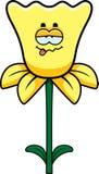 Sick Daffodil Stock Photography