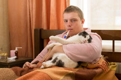 Sick guy with a thermometer lying in the bed and holding a fat cat Stock Image