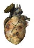 Sick Human Heart Royalty Free Stock Image