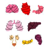 Sick Internal Organs and barbed wire set. Heart and brain. Liver vector illustration