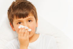 Sick kid boy with bad cold using paper napkins. Close-up portrait of sick kid boy with bad cold using paper napkins against blanked background Stock Images