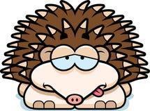 Sick Little Hedgehog Stock Photography