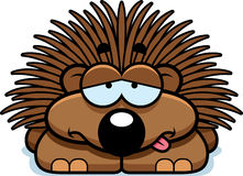 Sick Little Porcupine. A cartoon illustration of a little porcupine looking sick Royalty Free Stock Photo