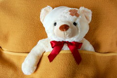Sick teddy. Bear in bed waiting for the doctor Royalty Free Stock Photo