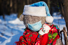 Sick teddy bear. In the wood stock photography