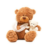Sick teddy with her baby. Isolated teddy bear with a broken arm, wit her baby Royalty Free Stock Photo