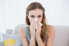 Sick young woman sitting on sofa blowing her nose Royalty Free Stock Photos