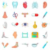 Sickness icons set, cartoon style. Sickness icons set. Cartoon set of 25 sickness vector icons for web isolated on white background Royalty Free Stock Image