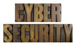 Sicurezza cyber Immagini Stock Libere da Diritti