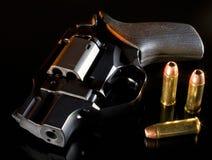Sicurezza di notte Immagine Stock Libera da Diritti