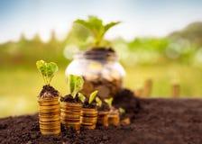 Sicurezza finanziaria Fotografia Stock Libera da Diritti