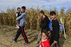 Sid的(塞尔维亚人- Croatina边界)难民 图库摄影