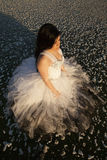 Sida för blick för bästa sikt för is för formell klänning för kvinna fotografering för bildbyråer