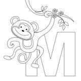 sida för färgläggning M för alfabet djur Arkivfoton