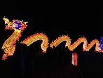 Sida för Kina ljusdrake royaltyfria foton
