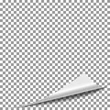 Sida för krullningspeelpapper Fliptidskriftsida, vektor för vändpappershörn royaltyfri illustrationer