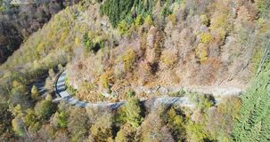 Side aerial top view over yellow vintage car travelling on road in colorful autumn forest.Fall orange,green,yellow red. Side aerial top view over yellow car stock footage