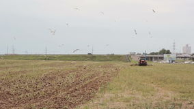 A side and back view of an agricultural tractor, plowing a field for sowing, turning right. Farming, crops stock video