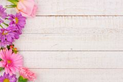 Side border of pink and purple flowers against white wood Royalty Free Stock Images