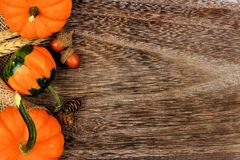 Side border of pumpkins, gourds and leaves against wood Stock Images