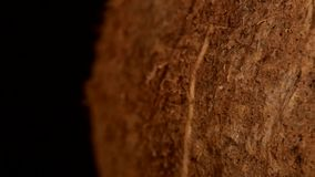 Side of coconut isolated on black, rotation stock video