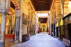 Side corridor, the great Mosque in Cordoba, Spain. One of the side corridors in the great mosque or mezquita in Cordoba, Spain Royalty Free Stock Photo