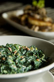 Side of creamed spinach Royalty Free Stock Photo