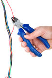 Side cutter cutting the red wire Stock Image