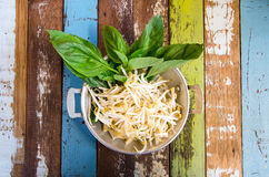 Side dish of noodle Royalty Free Stock Image