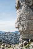 Side face shaped on rock Royalty Free Stock Photos