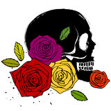 Side face skull with roses Royalty Free Stock Photography