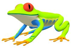 A side facing view of a red-eyed tree frog royalty free stock photography