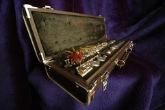 Side flute velvet Stock Images