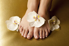 Side light pedicure in SPA. SPA pedicure foot with orchids on golden seat Royalty Free Stock Photo