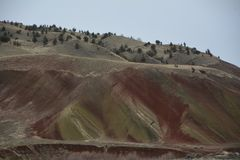 Hillside in Oregon`s Painted Hills Nat`l Monument. This is the side of one of the colored hills of Painted Hills National Monument in Central Oregon. The area is royalty free stock photos