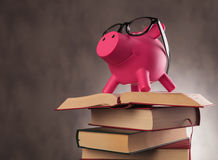 Side of a piggy bank wearing glasses standing on books. Side view of a pink piggy bank wearing glasses and standing on a pile of books - education pays off Stock Images