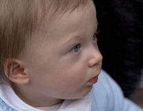Side on Profile of a Baby. Royalty Free Stock Images