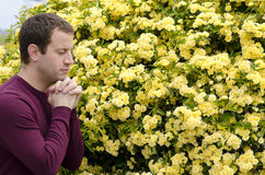 Side profile of man praying by yellow flowers. Side profile of man praying by yellow flowers with fingers interlocked under his chin stock photo