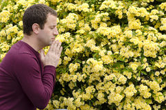 Side profile of man praying by yellow flowers. Stock Photos