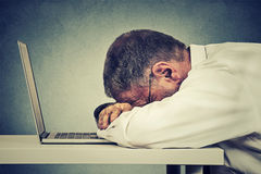 Side profile mature business man sleeping on a laptop Royalty Free Stock Images
