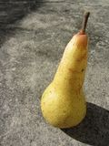 Side profile view of single yellow ripe pear casting shadow on the ground in a sunny day.  stock image